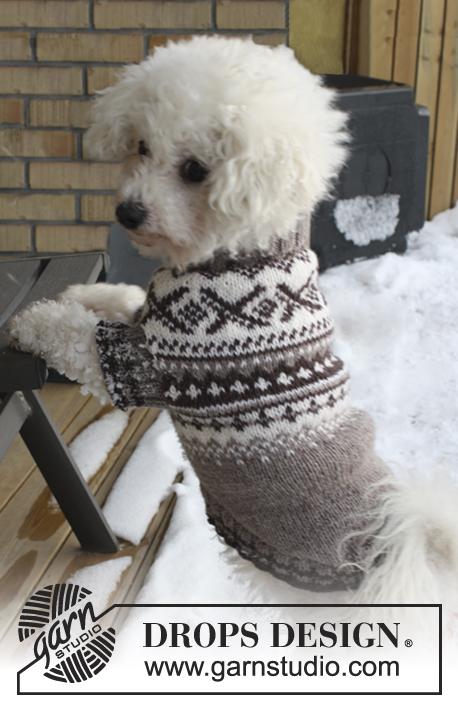 Battersea Dogs Home Knitting Pattern Dog Coat : Breipatroon Honden trui met Noors patroon